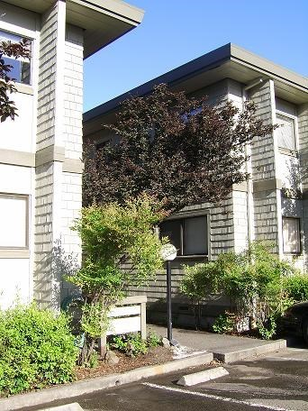 25 Plum Tree Lane 2 Beds Apartment for Rent Photo Gallery 1
