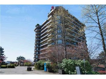 1001-3740 Albert Street 2 Beds Apartment for Rent Photo Gallery 1
