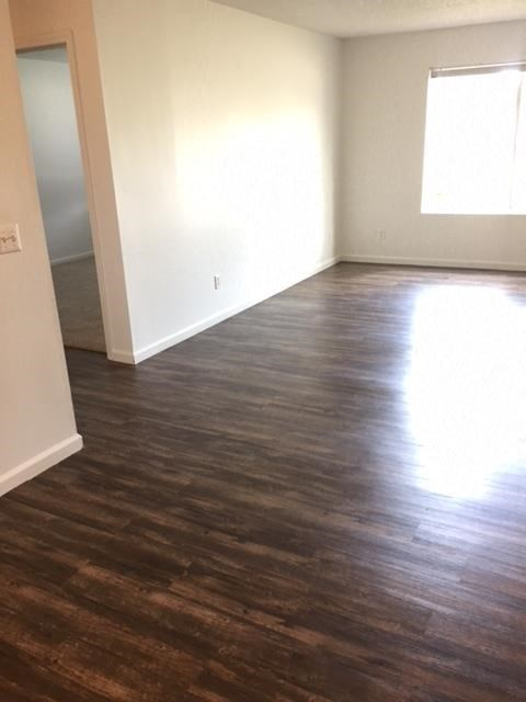 natural sunlight, bright white clean cabinets, wood flooring, premium countertops and appliances at regency apartments in Bettendorf Iowa