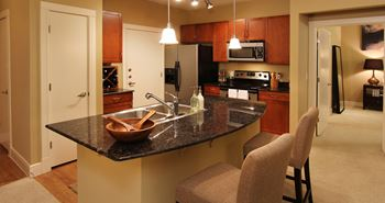 1001 Lake Carolyn Parkway 1-2 Beds Apartment for Rent Photo Gallery 1