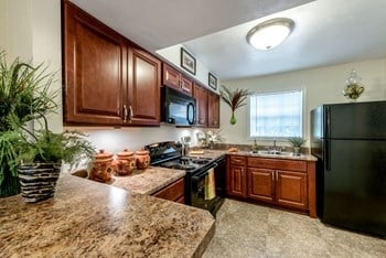 4431 Lakefield Mews Dr 3 Beds Apartment for Rent Photo Gallery 1