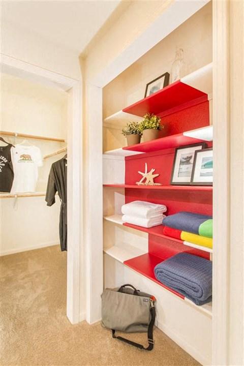Shelfs and Storage Area