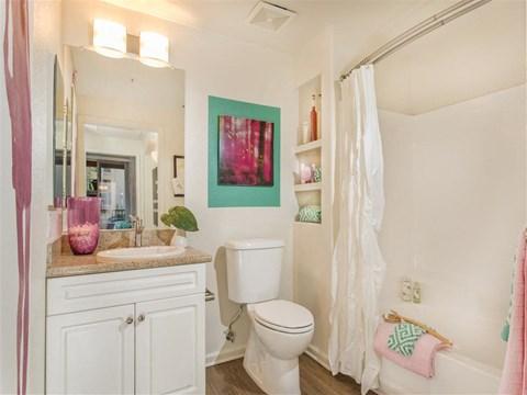 Bathroom Shower and Storage