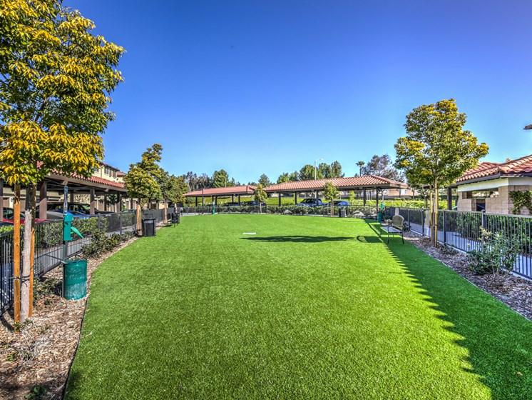 Dog Park at The Vineyards at Paseo del Sol, California
