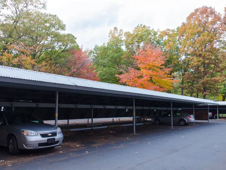 Carports Available at Tiffany Woods Apartments in Muskegon MI