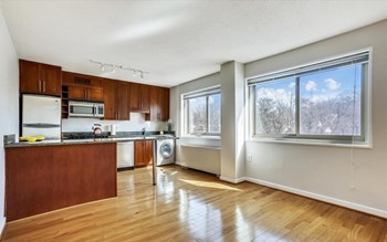 Unit 408 S 1 Bed Apartment for Rent Photo Gallery 1