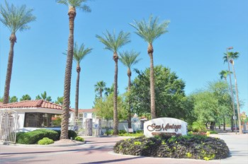 6745 E. Superstition Springs Blvd 3 Beds Apartment for Rent Photo Gallery 1