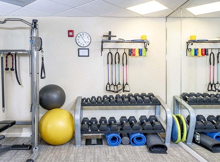 Weight equipment in gym