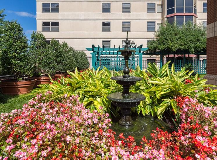 Garden & Fountain
