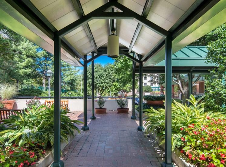 Garden & Walkway