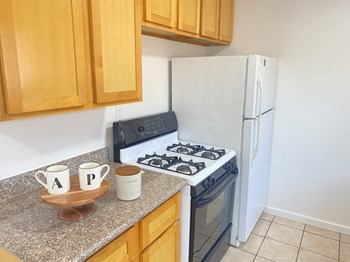 2039 85Th Avenue (D) 2 Beds Apartment for Rent Photo Gallery 1