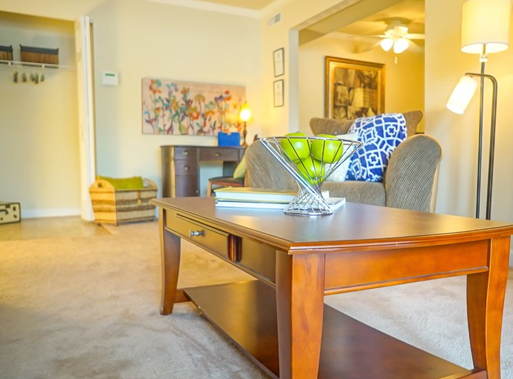 large one bedroom apartments in Virginia Beach