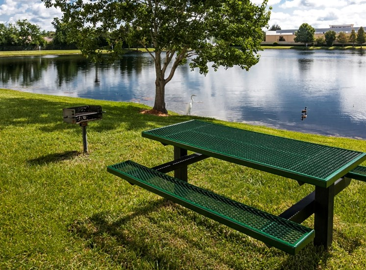 Bench Near Lake