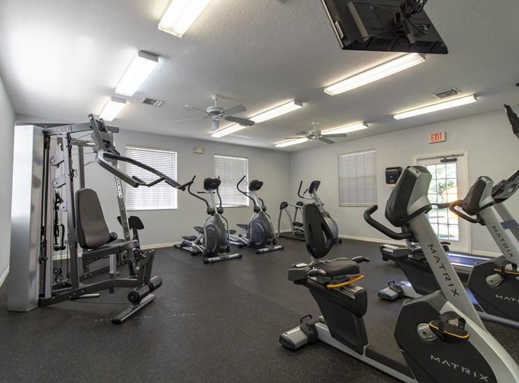 Free Weights And Cardio Equipment