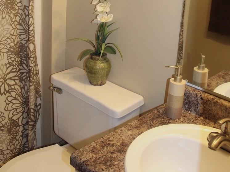 Tara Garden Apartments in Huntsville, Alabama bathrooms with brushed nickel fixtures