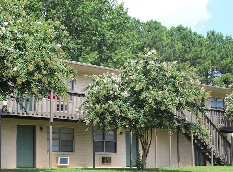 Tara Garden Apartments in Huntsville, Alabama large, established trees and landscaping