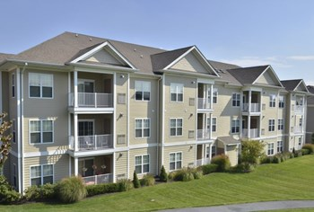 1345 Martin Court 1-2 Beds Apartment for Rent Photo Gallery 1