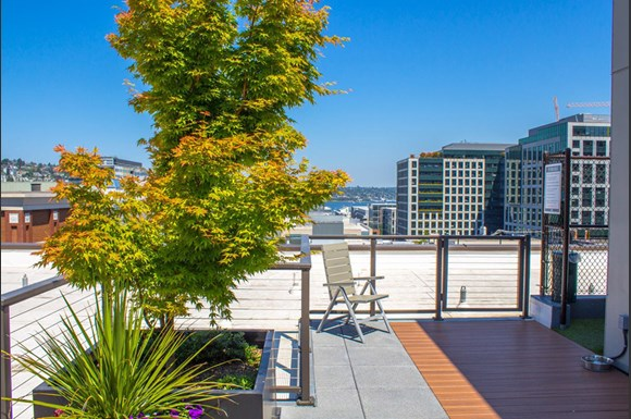 Seattle Washington Apartments For Rent Cheap