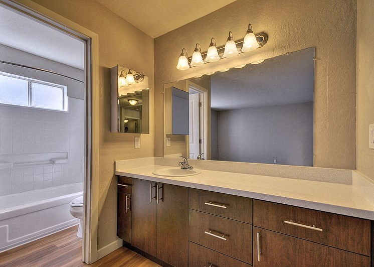 Luxury Apartment Community Bathroom with Wood Cabinetry