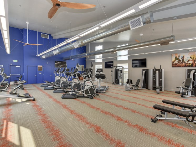 Luxury Apartment Fitness Center with Cardio and Weight Machines