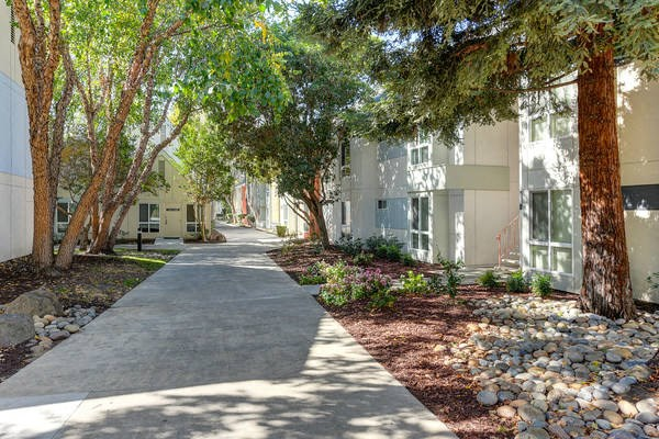 Luxury Apartment Community Walking Path and Landscaping