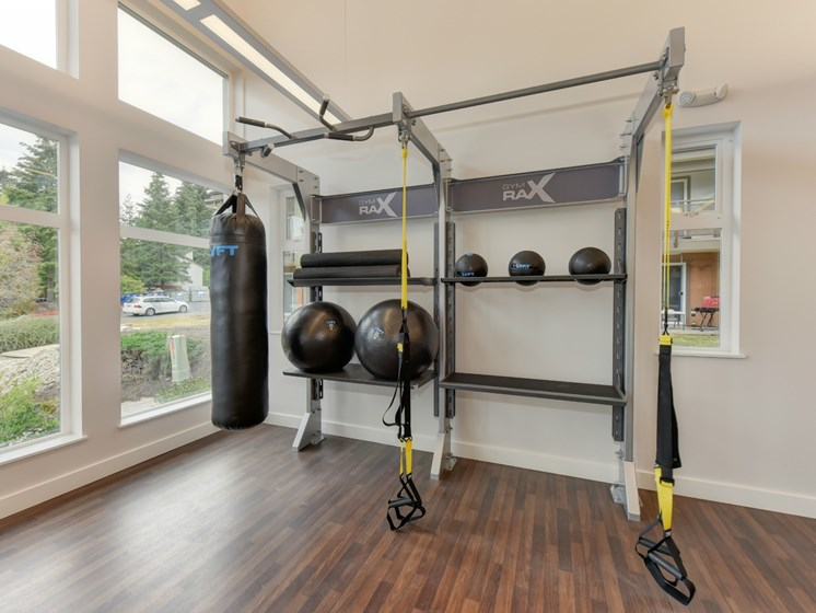 Luxury Apartment Community Fitness Center Heavy Bag and Medicine Balls for Boxing Crossfit General Fitness