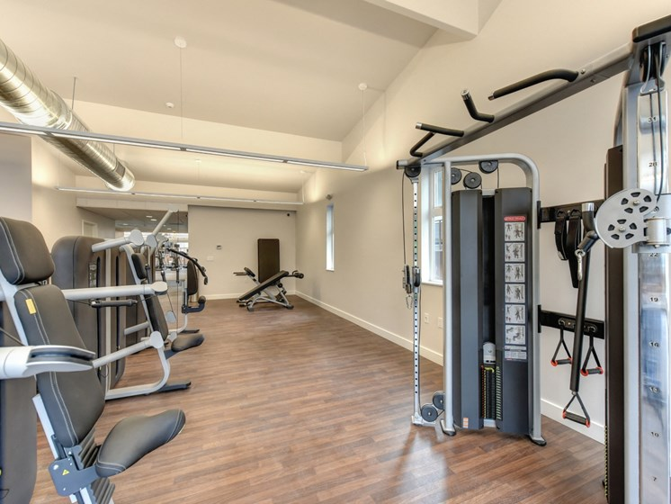Luxury Apartment Community Fitness Center Weight Machines