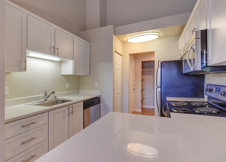 Luxury Apartment Community Kitchen with Stainless Steel Appliances and White Cabinetry