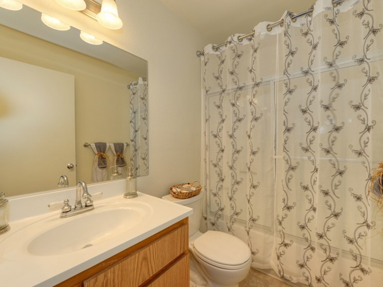 Luxury Apartment Community Bathroom