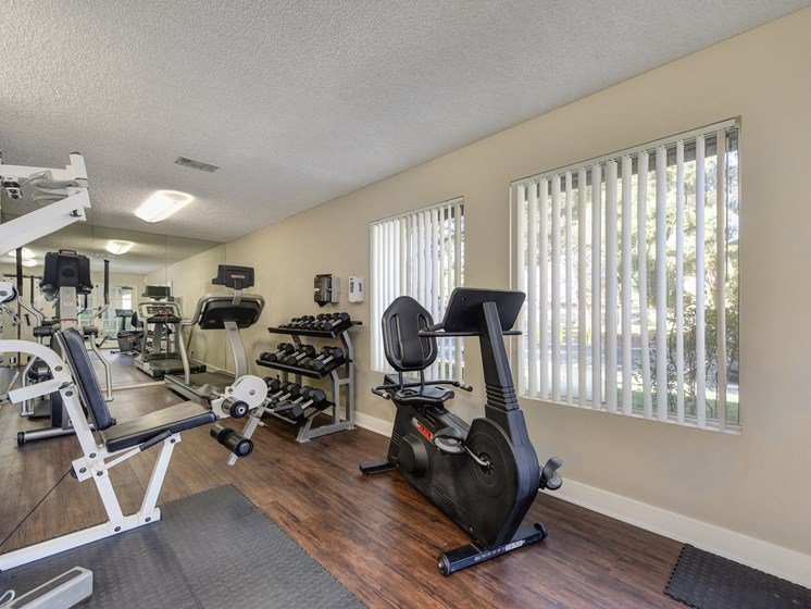 Luxury Apartment Community Fitness Center with Cardio and Weight Machines