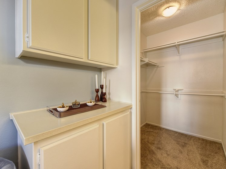 Luxury Apartment Community Large Extended Bedroom Closet and Vanity