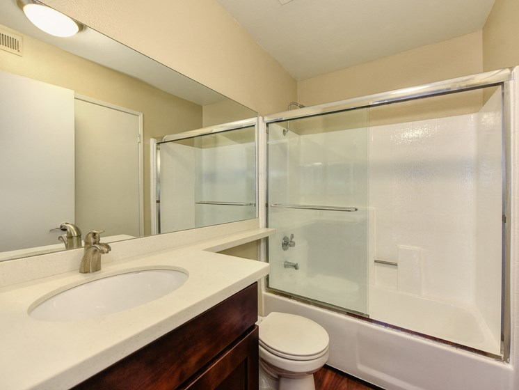 Luxury Apartment Community Bathroom 2