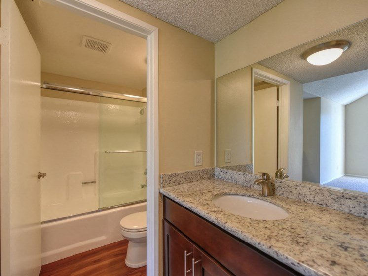 Luxury Apartment Community Bathroom with Designer Countertops View of Shower