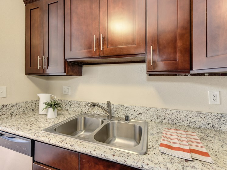 Luxury Apartment Community Kitchen with Quartz or Granite Countertops