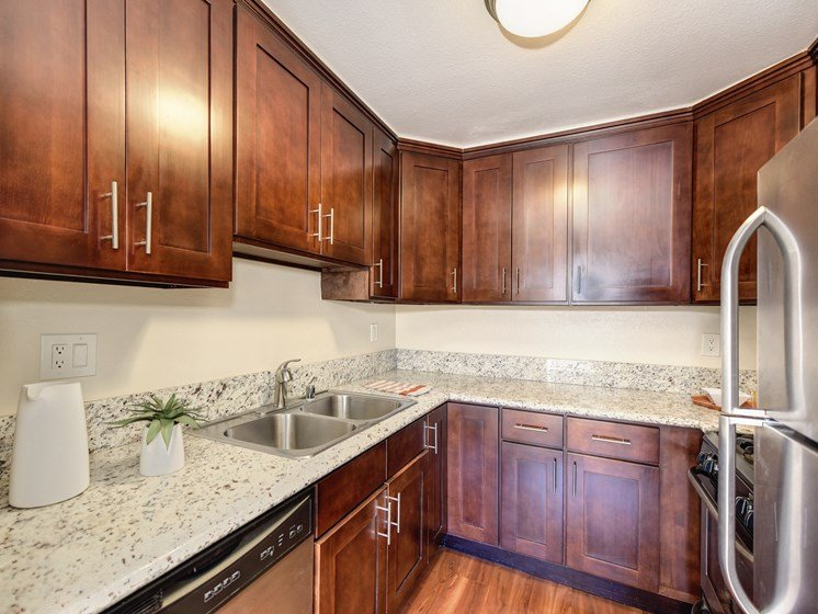 Luxury Apartment Community Kitchen with Wood Cabinets and Quartz or Granite Countertops