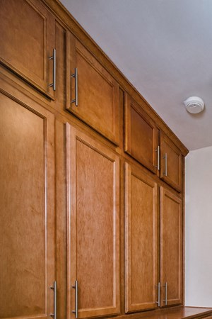 Built-in Cabinetry (select homes)