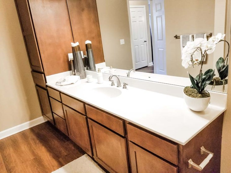 Bathroom Sink at Cumberland Place Apartment Homes, Texas, 75703
