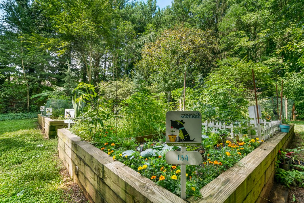 Residential Community Garden at Hawthorne Northside