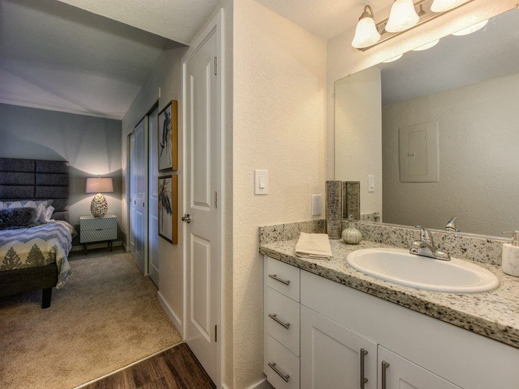 Luxury Apartment Community Bathroom Adjoining Bedroom
