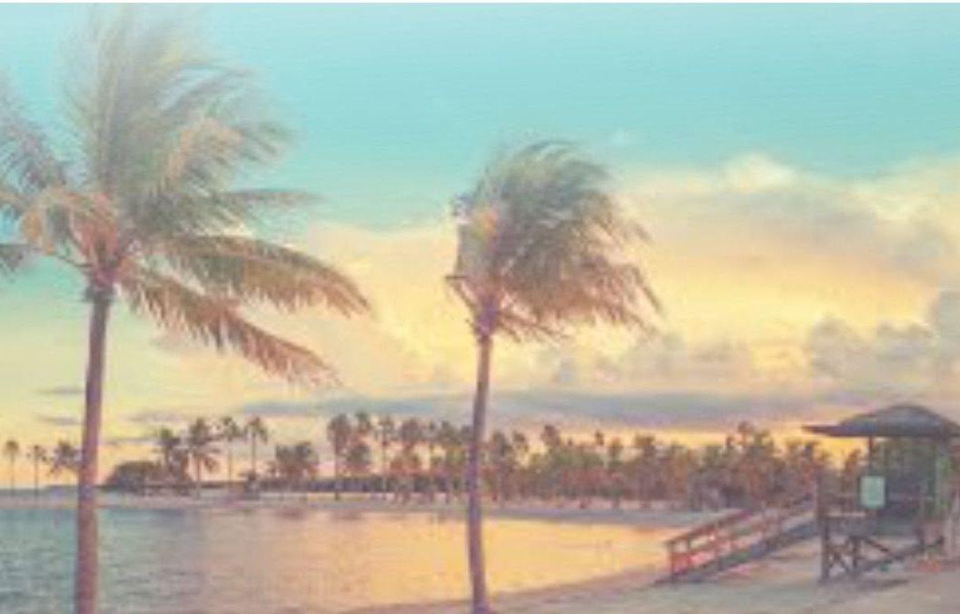 New Horizons Apartments Miami Fl