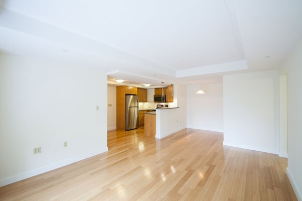 Exotic Bamboo Flooring in Living Room and Kitchen at Marion Square, Brookline