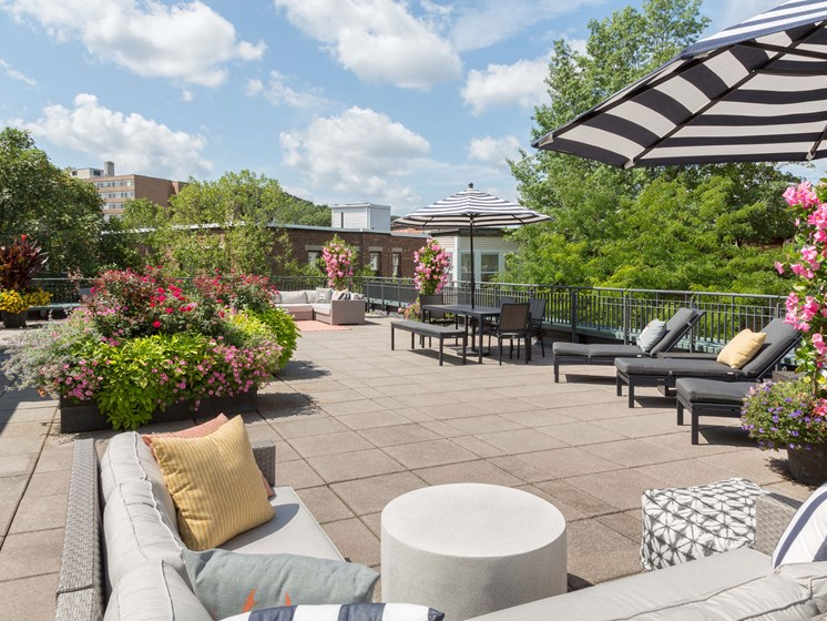Roof Deck at Marion Square- Brookline, MA