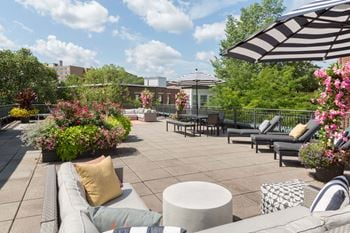 77 Marion and 1405 Beacon Street 1-3 Beds Apartment for Rent Photo Gallery 1