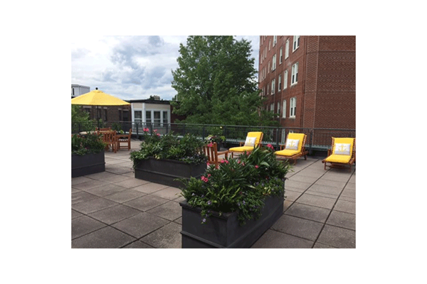General Roof Deck with Beautiful Landscaping, Providing Leisure Area For All Residents at Marion Square, Brookline,Massachusetts