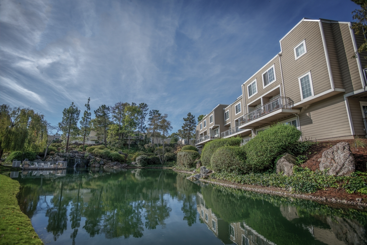 Lagoon. Larkspur Photo Gallery 2