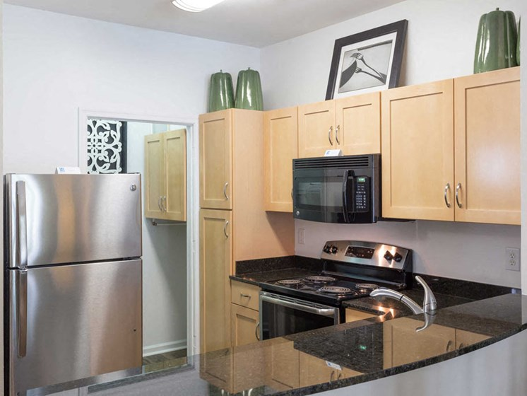 Habour Breeze Luxury Apartment Kitchen with stainless steel appliances