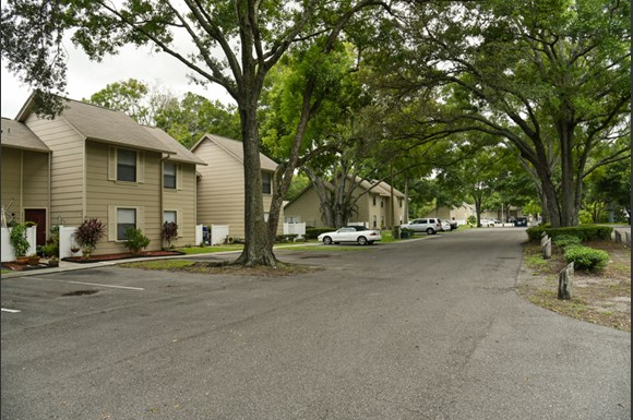 Apartments For Rent In Tampa Fl Hillsborough