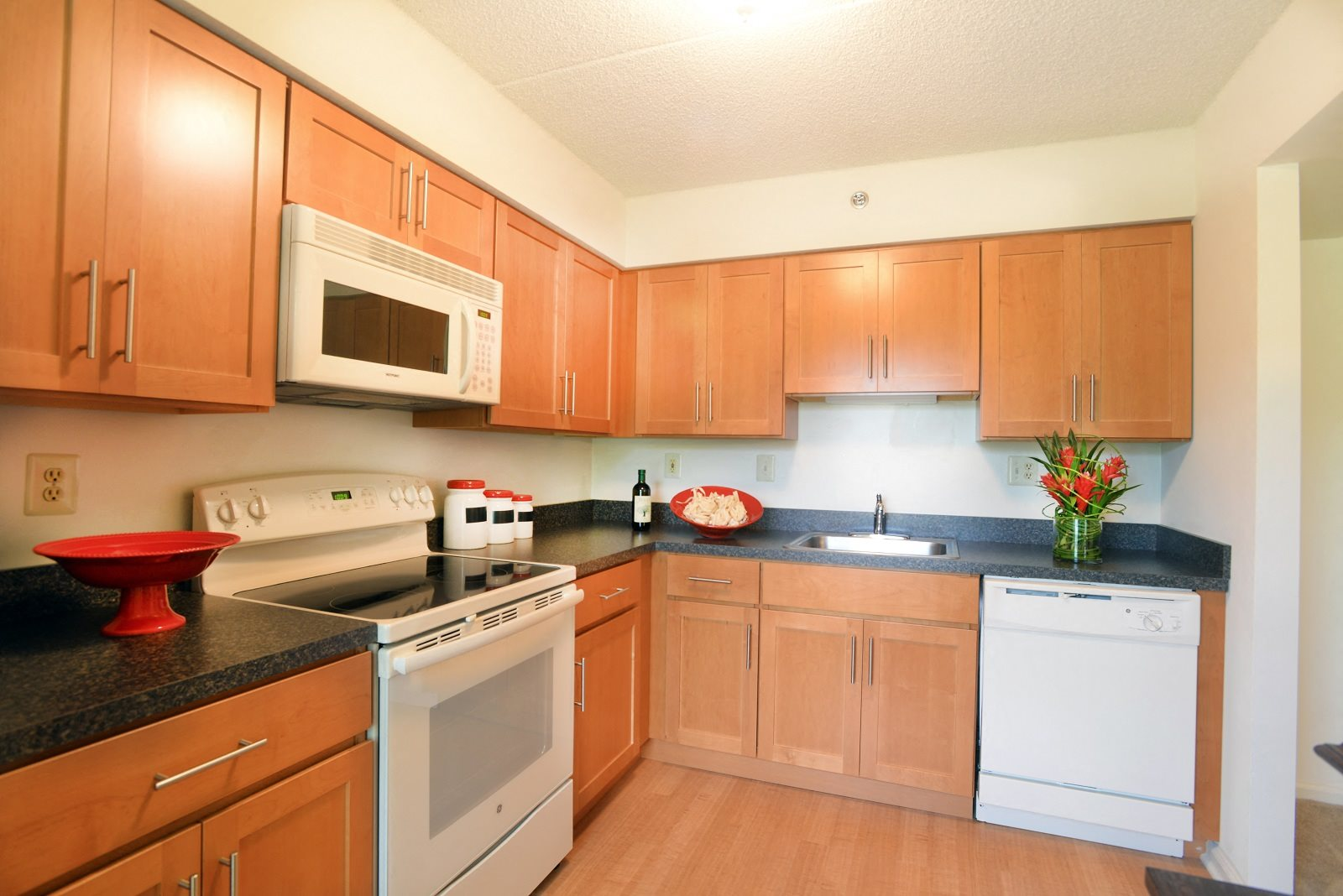 Upgraded Kitchen at Chaddwell