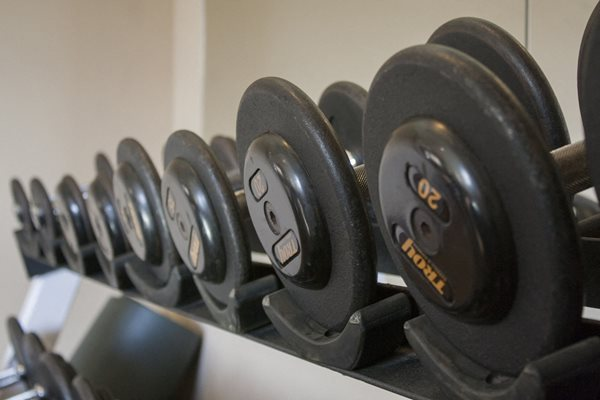 Severgn Free Weights