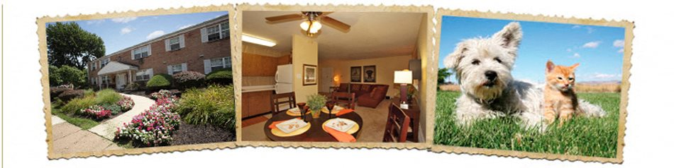 camp hill plaza apartment homes apartment and community amenities